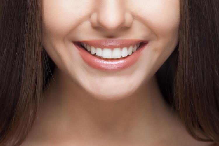 cuantos-dientes-tenemos